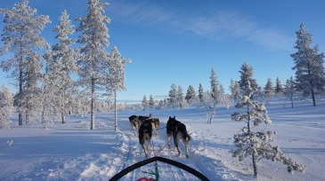 LAPLAND - BEYOND THE ARCTIC CYCLE